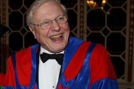 David Attenborough collects an honourary degree from Trinity College, Dublin, December 2008.