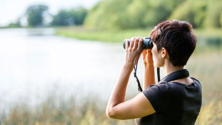 Stock image of a woman birdwatching