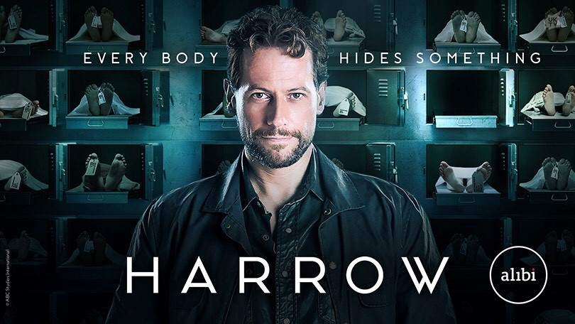 Harrow (2018) 1x04 Espa&ntildeol Disponible