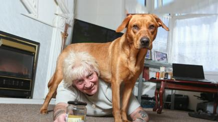 Pet dog saves pensioner's life after he almost choked to death on a pickled onion
