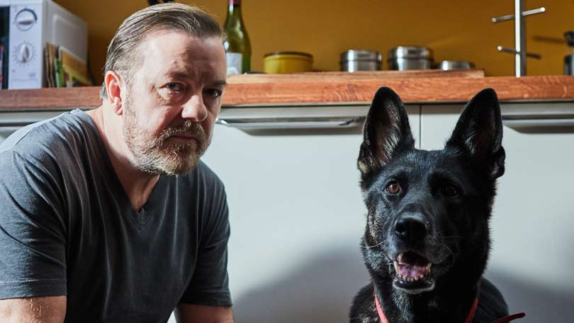 Image result for after life ricky gervais
