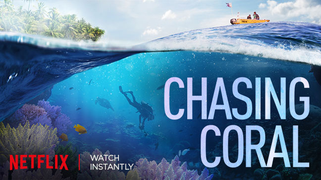 Chasing Coral: 5 things we learned from the vital Netflix documentary | BT