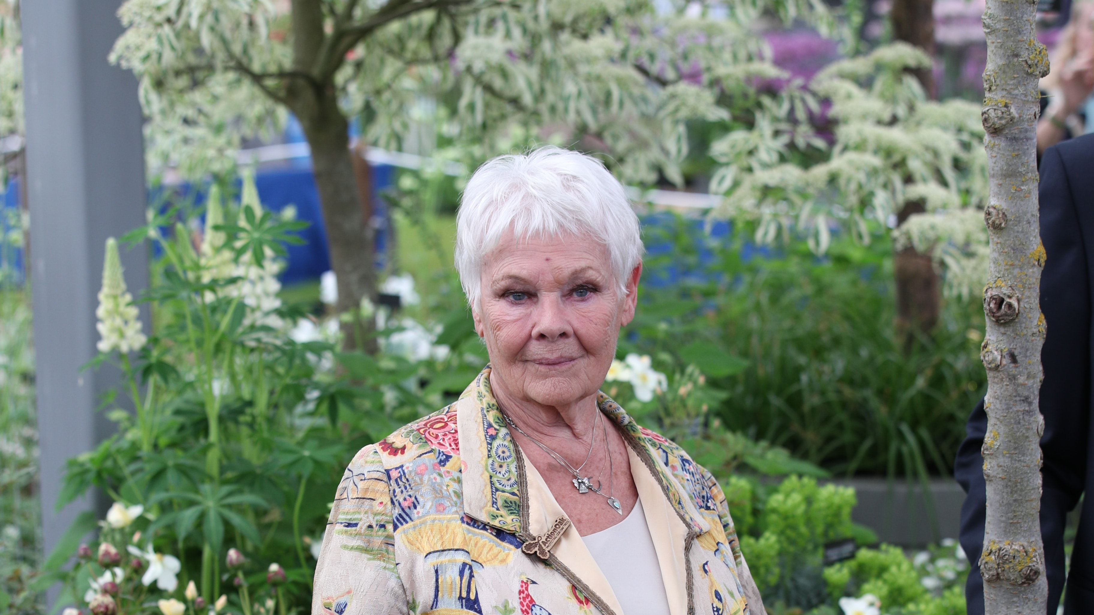 Judi Dench says failing eyesight saved her from fear ...